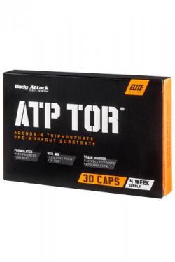 ATP Tor - Mehr Kraft, mehr Leistung!!!