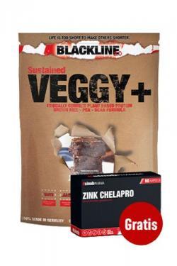 +++ Veggy+++ Veganes Protein 900g + 60 Caps Zink Chelapro gratis